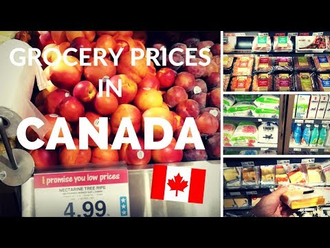 food-prices-in-canada-|-costs-of-living-in-canada-|-supermarket-tour-in-ottawa,-ontario,-canada