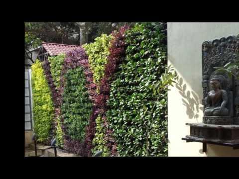 Professionals in Vertical Garden Bangalore