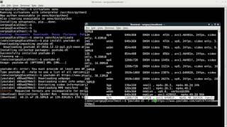 Как скачать видео с youtube с помощью youtube-dl в Linux