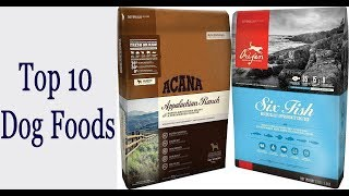Top 10 Dog Foods, The Best Dog Foods  You Can Buy