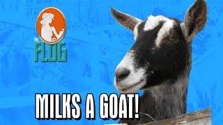 Felicia Day Milks a Goat!