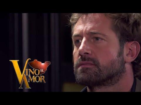 Vino El Amor David Confronta a Miguel