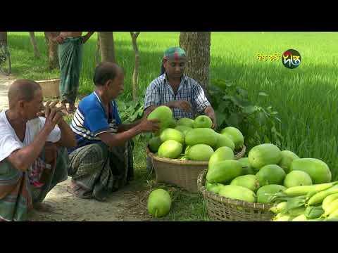 Deepto Krishi/দীপ্ত কৃষি -শীতকালীন ফসলের আগাম চাষ/কুমিল্লা, পর্ব ৩৪১