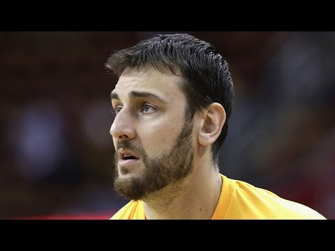 Andrew Bogut Back to the Warriors?