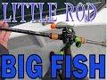 DEEP SEA FISHING WITH A BASS ROD