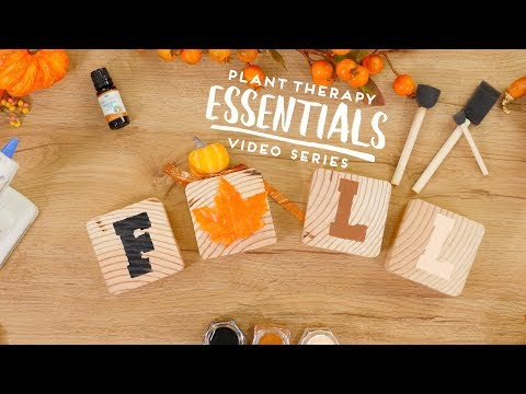 DIY Essential Oil Diffuser Blocks Fall Craft   Plant Therapy Essentials