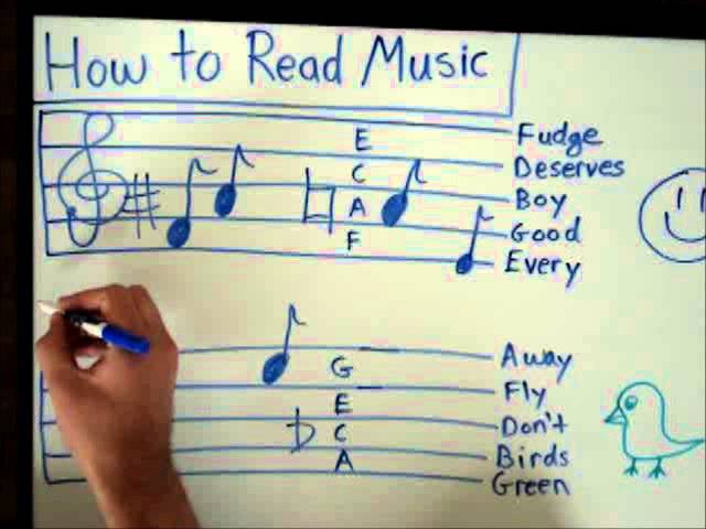 How To Read Music Basics For Beginners Music Theory Lesson Youtube
