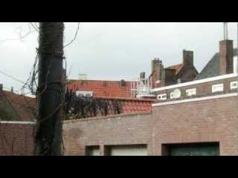 Boompjes in brand 22/2/2017 Hof van st. Middelburg