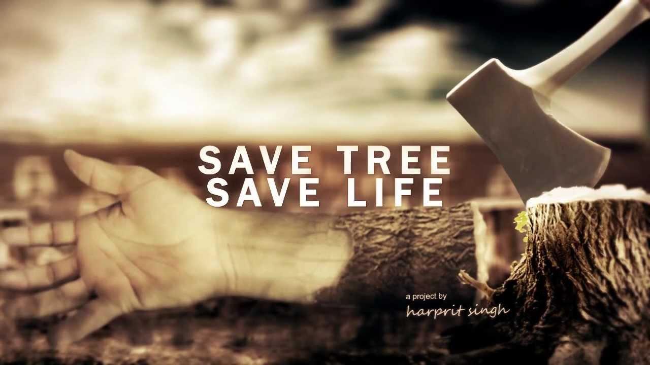 Essay on save the beach save the earth