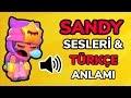 SANDY SESLERİ VE TÜRKÇE ANLAMI! BRAWL STARS