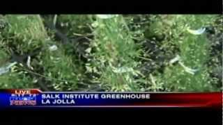 KUSI-TV - New Plant Technology - Salk News Clip - Part1