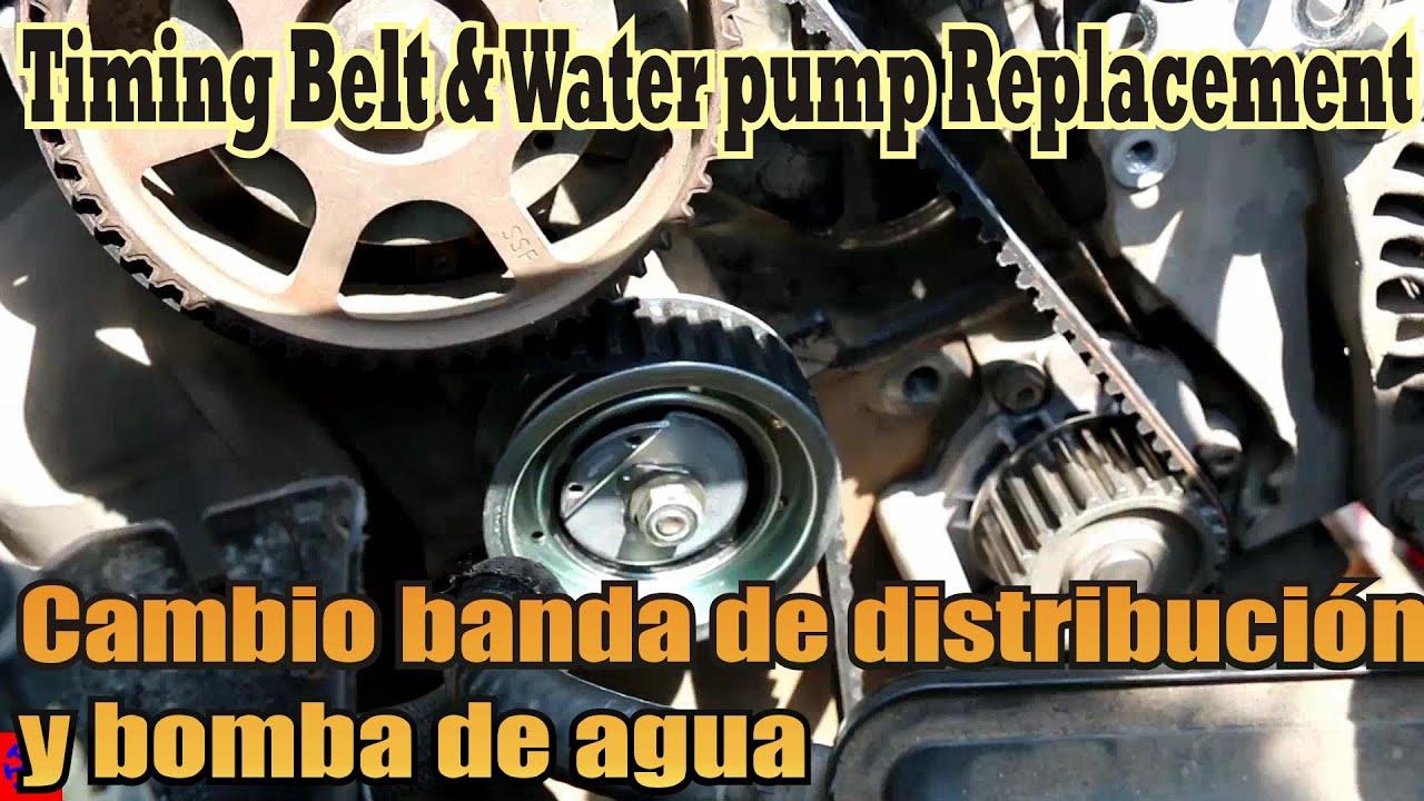 Banda De Distribuci 243 N Bomba De Agua Jetta A4 Youtube