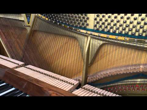 Piano Strings Resonance