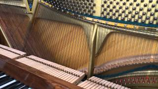 Piano Strings Resonance