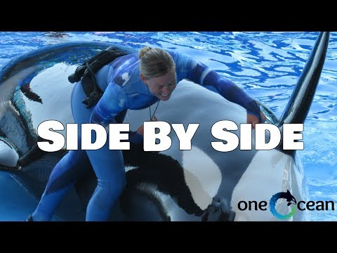 SeaWorld, Side By Side Lyrics