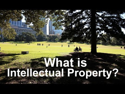 What is Intellectual Property (IP)?
