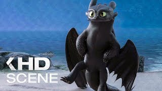 Toothless dances for the Day Fury [Fragment from the cartoon How to Train Your Dragon 3]