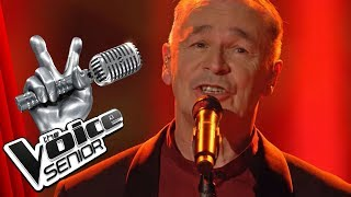 Nena - In meinem Leben (Joerg Kemp) | The Voice Senior | Finale | SAT.1 TV