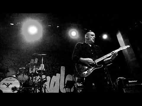 "THE STRANGLERS ""Golden Brown"" + ""Hanging Around"" - Live at The Regent - Los Angeles 5.29.19"