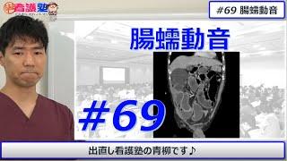 看護學生講座 148 聴診 「腹部の聴診 方法と異常時(イレウスなど)」 - смотреть онлайн