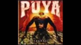 Puya-Montate