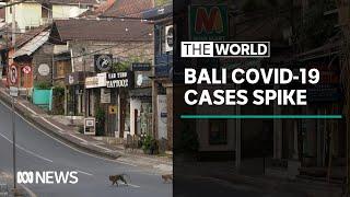 Bali coronavirus: Record high numbers for five straight days   The World