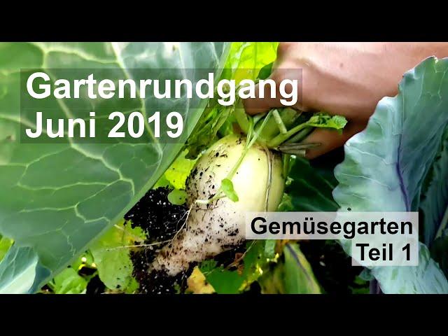 Gartenrundgang Juni 2019 [Gemüsegarten][Teil 1]