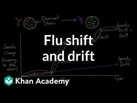 Flu shift and drift | Infectious diseases | Health & Medicine | Khan Academy