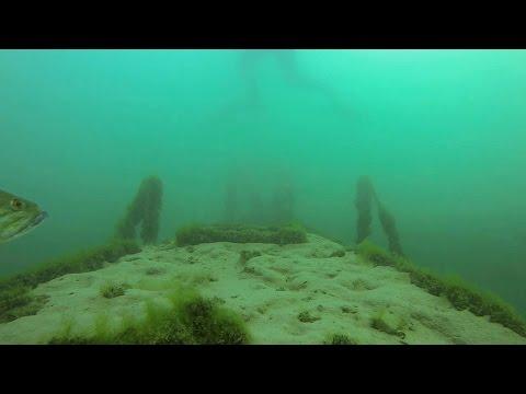 Scuba Diving Lake Havasu