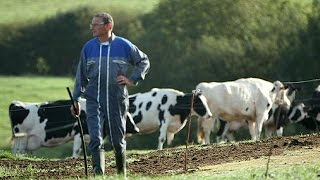 Des agriculteurs européens au désespoir - reporter