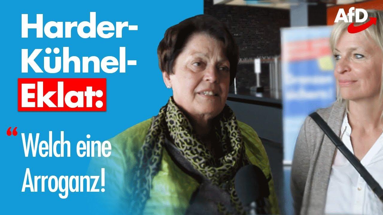 """AfD nach Harder-Kühnel-Eklat: """"Welch eine Arroganz!"""""""
