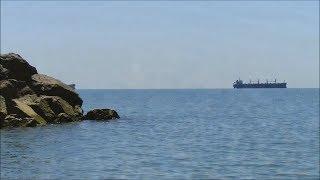 видео Черное море и его обитатели