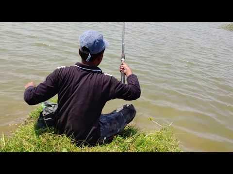 Fish Catching    Fishing For Red-bellied Piranha,Roopchanda