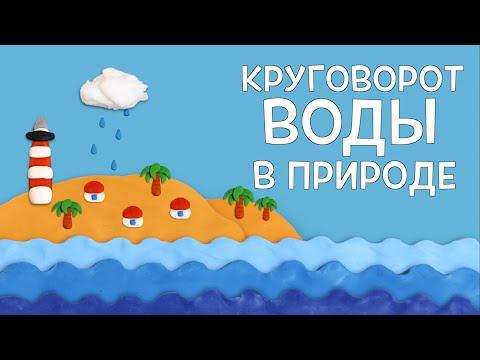 Мультфильм круговорот воды в природе для детей