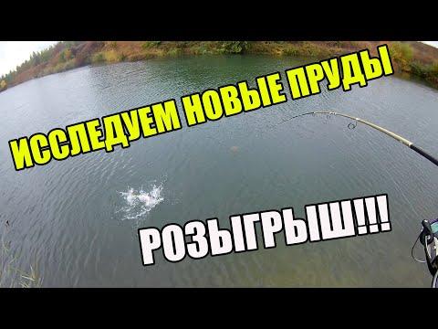 Розыгрыш рыболовных призов!   Ловим щуку на заброшенных прудах