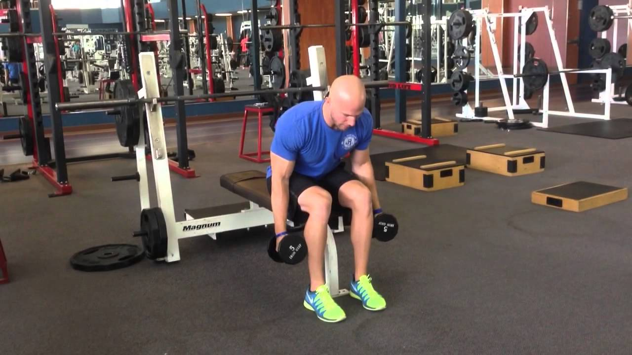 Build Strong Rear Delts With the Bent-Over Lateral Raise   STACK