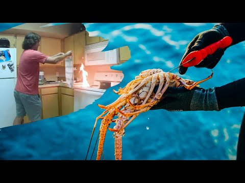 Lobster Mini Season, Spearfishing {Catch Clean Cook} Fail