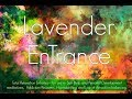 Lavender EnTrance Meditation - Ultimate Guided Relaxation. (30' Self Hypnosis session)