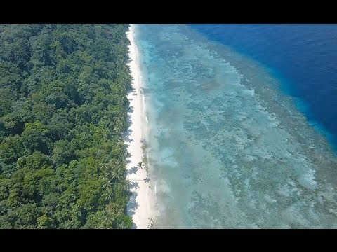 Three Islands of Dream - Maratua, Sangalaki & Kakaban