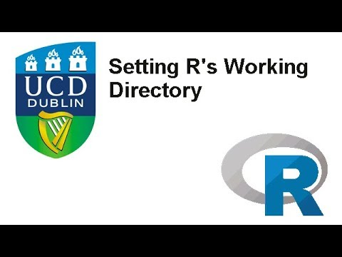 Set working directory in R
