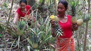 Finding food meet natural pineapple in jungle for eat - Natural pineapple eating delicious #72