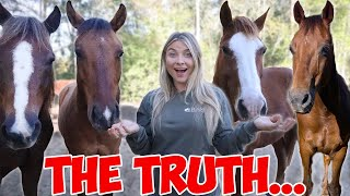 What It's REALLY Like Owning Horses.. THE TRUTH
