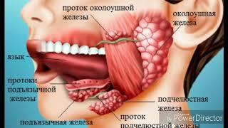 видео Аденома слюнной железы: симптомы и разновидности