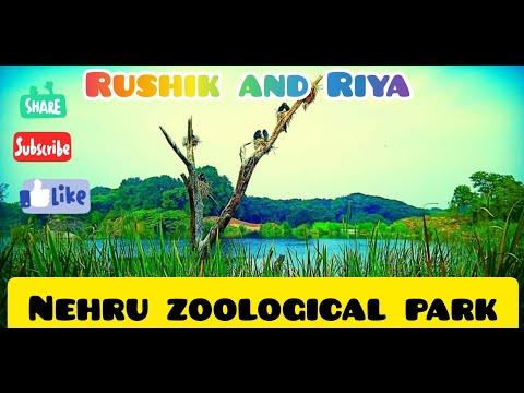 Zoo trip 2018