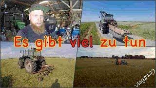 FarmVLOG#129 - es gibt viel zu tun
