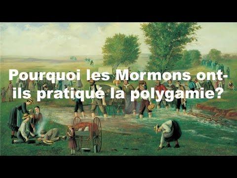 femme cherche polygame