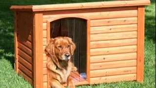 Будка для собаки правила и размеры / Будка для собаки теория /  Doghouse dog rules and dimensions