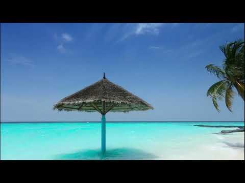 summer-nights---vlog---(-no-copyright-music)