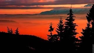 Las woda natura dla Twojego Spokoju Ducha: Muzyka Natury