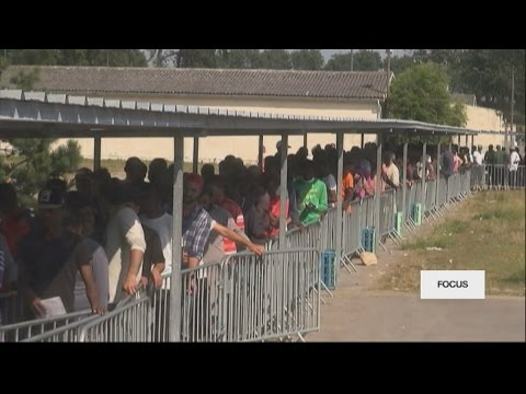 #Focus - Migrants continue to head to France's Calais 'Jungle' camp